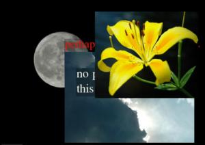 Realizar fotomontajes online: Fotonea